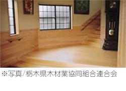 ※写真/栃木県木材業協同組合連合会